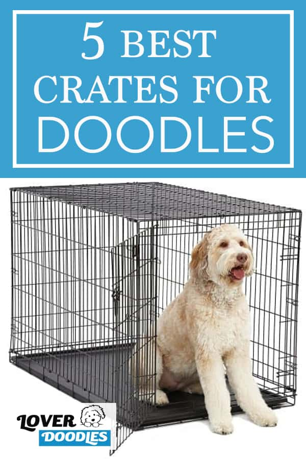 5 of the BEST Crates For Doodles