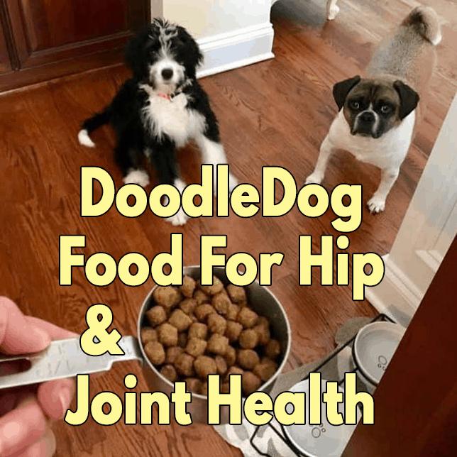 DoodleDog Food For Hip & Joint Health