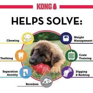 Kong - Extreme Dog Toy