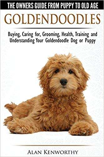Goldendoodles - The Owners Guide from Puppy to Old Age