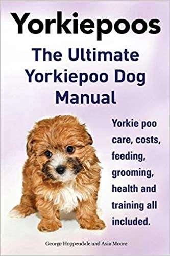 Yorkie Poos. the Ultimate Yorkie Poo Dog Manual