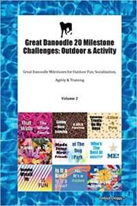 Great Danoodle 20 Milestone Challenges