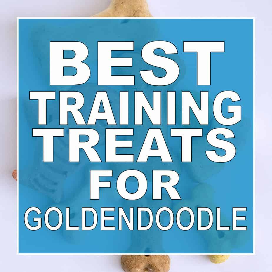 best training treats for goldendoodles