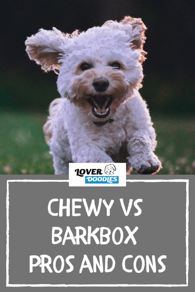 Chewy Goody Box vs Barkbox Pros and Cons