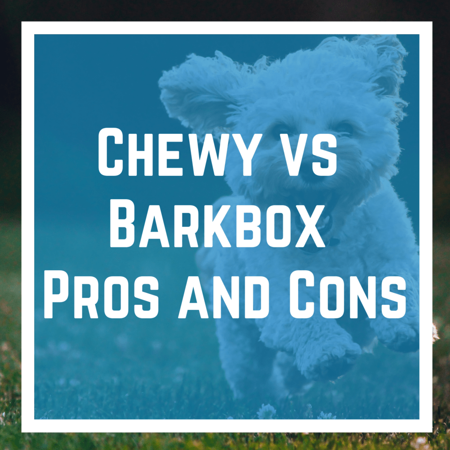 Chewy vs Barkbox Pros and Cons
