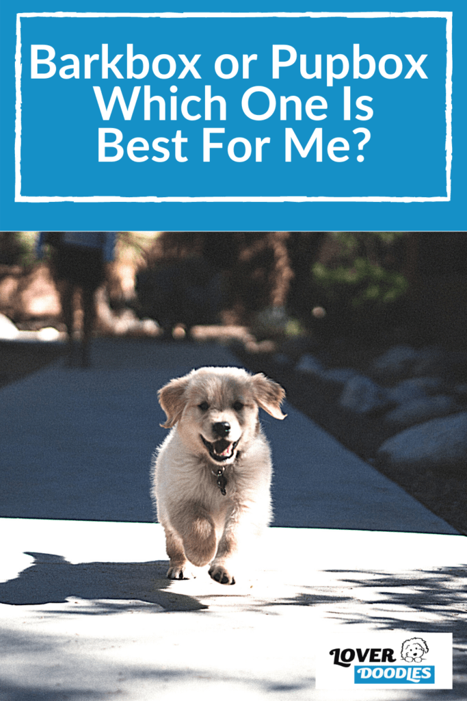 Barkbox or Pupbox - Which One is Best For Me?