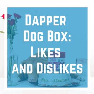 Dapper Dog Box: Pros and Cons