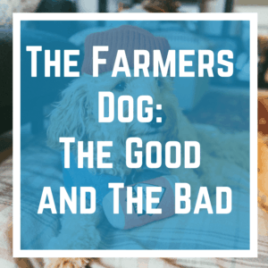The Farmers Dog: The Good and The Bad