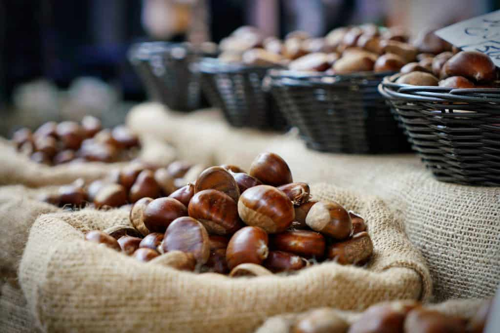 Can Dogs Eat Chestnuts? Read Before Feeding