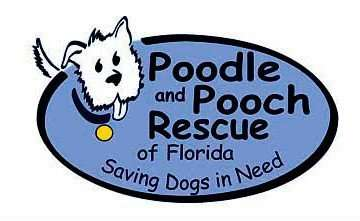 Poodle and Pooch Rescue